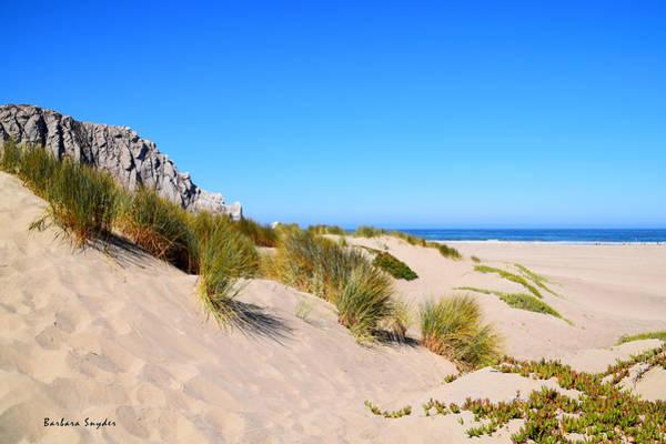 Painting - Sand Dunes At Morro Bay by Sand Dunes At Morro Bay