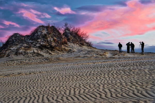 Photograph - Sand Dunes Of Kitty Hawk by Donald Brown