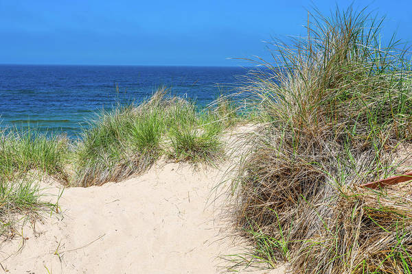 Photograph - Sand Dunes Overlooking Lake Michigan by Dan Sproul