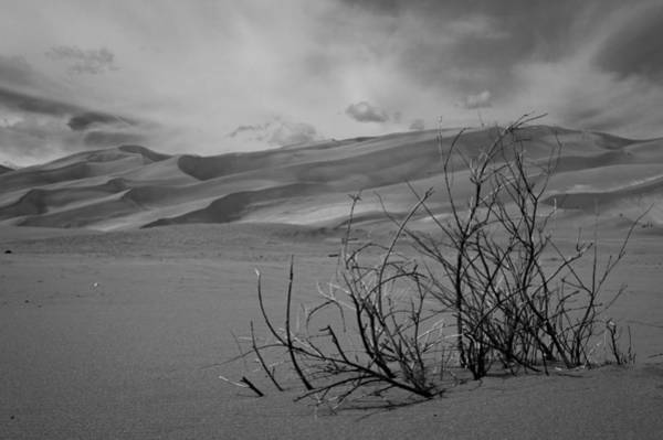 Photograph - Sand Dunes by Stephen Holst