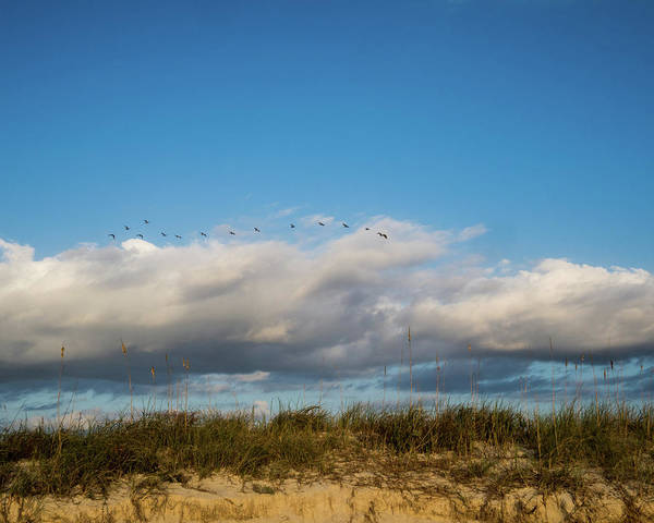 Matanzas Inlet Wall Art - Photograph - Sand Dunes View by Tammy Ray