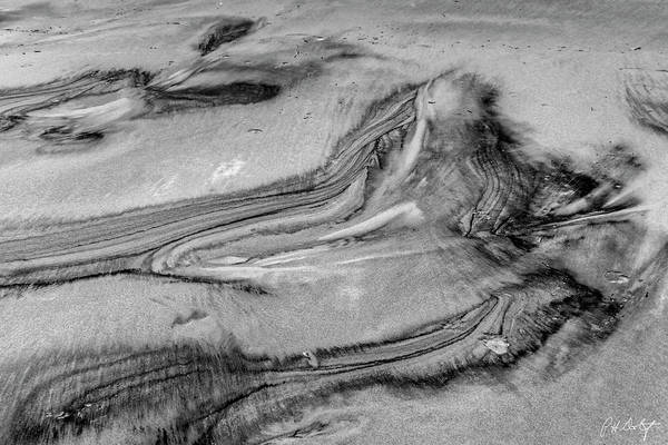Lowcountry Digital Art - Sand Impressions One by Phill Doherty