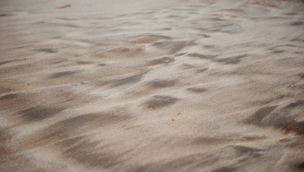 Photograph - Sand Patterns by Helen Northcott