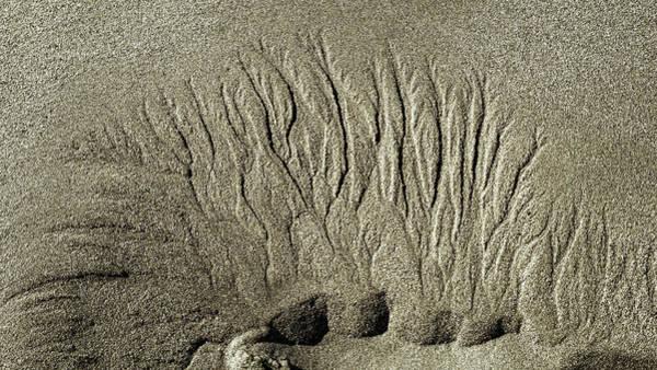 Photograph - Sand Patterns On The Beach  1 by Steven Ralser