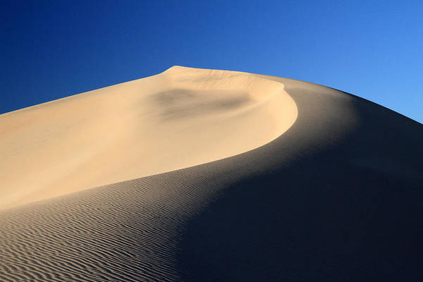 Photograph - Sand Shadows by Pierre Leclerc Photography