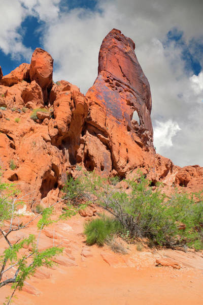 Photograph - Sand Stone Monolith Valley Of Fire by Frank Wilson
