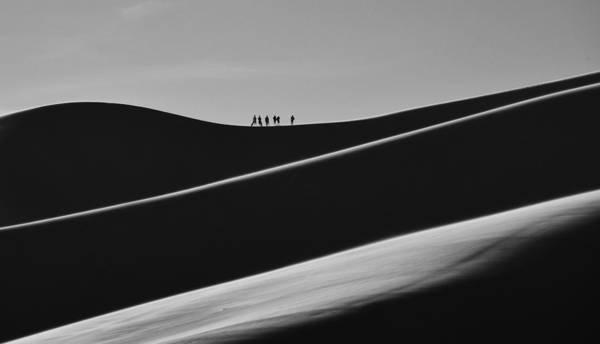 Photograph - Sand Trekkers 2 by Rand