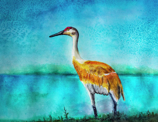 Painting - Sandhill Crane Watercolor by Rick Mosher