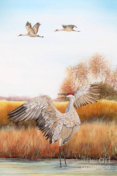Wall Art - Painting - Sandhill Cranes-jp3161 by Jean Plout