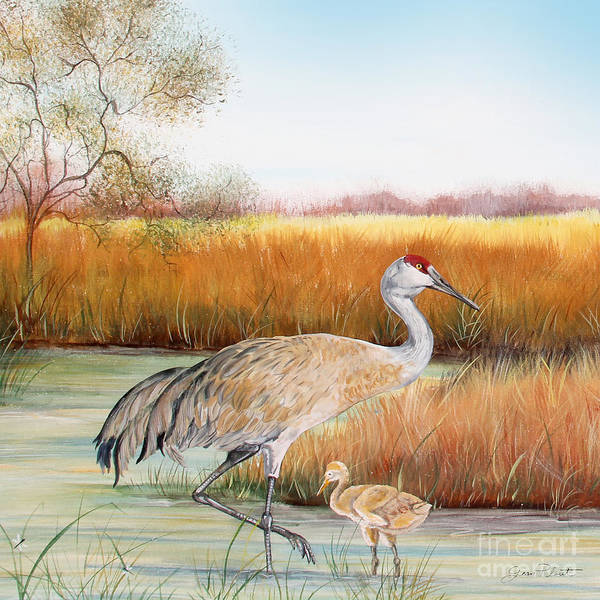 Wall Art - Painting - Sandhill Cranes-jp3162 by Jean Plout