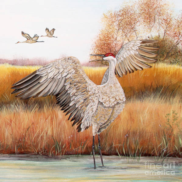 Wall Art - Painting - Sandhill Cranes-jp3163 by Jean Plout