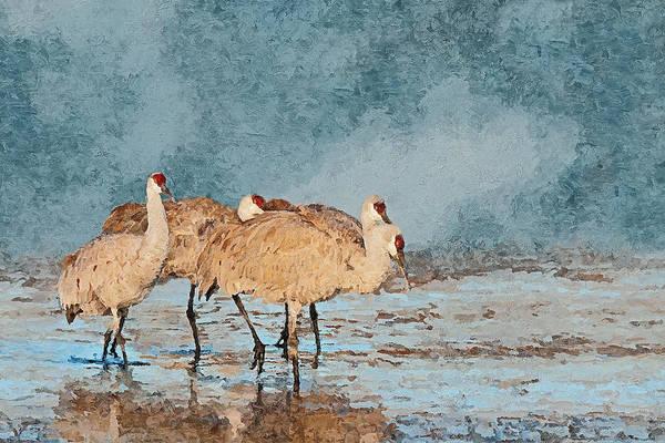 Wildlife Refuge Digital Art - Sandhill Cranes - Morning Stroll by SharaLee Art