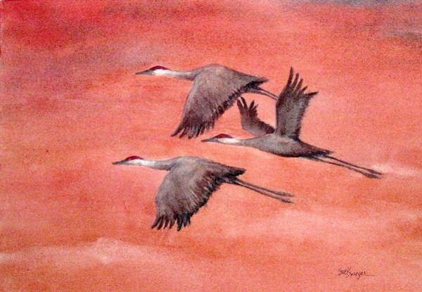 Wall Art - Painting - Sandhill Cranes by Suzanne Krueger