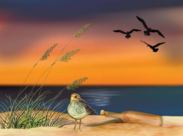 Painting - Sandpiper For Angel by Anne Beverley-Stamps