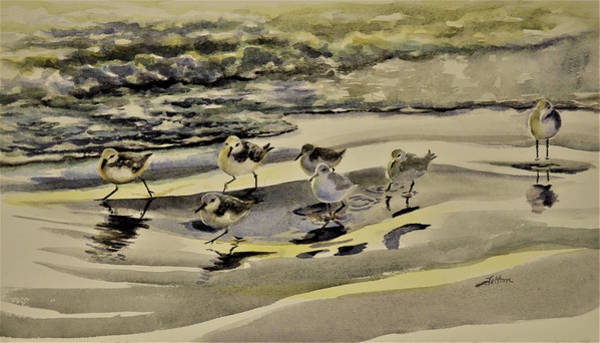 Painting - Sandpiper Morning by Julianne Felton