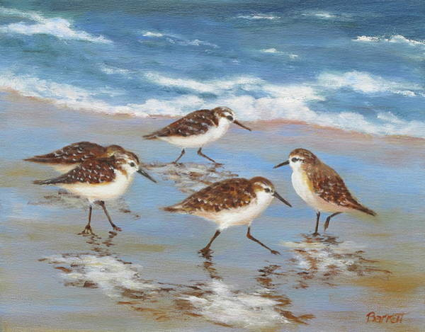 Florida Beach Painting - Sandpipers by Barrett Edwards