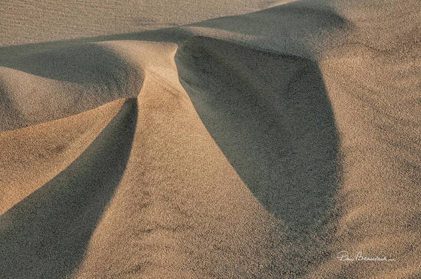 Photograph - Sands Of Jockey's Ridge 1389 by Dan Beauvais