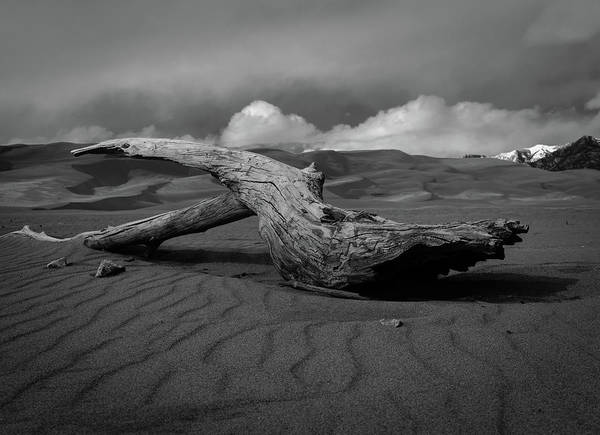 Blanco Y Negro Wall Art - Photograph - Sands Of Time by Michael Osborne