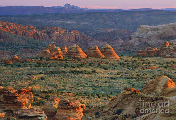 Photograph - Sandstone Buttes, Arizona, Usa by Frans Lanting/MINT Images