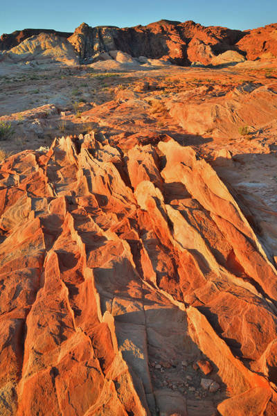 Photograph - Sandstone Fins At Sunrise In Valley Of Fire by Ray Mathis