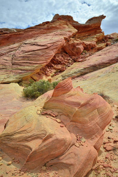 Photograph - Sandstone Formations In Valley Of Fire by Ray Mathis