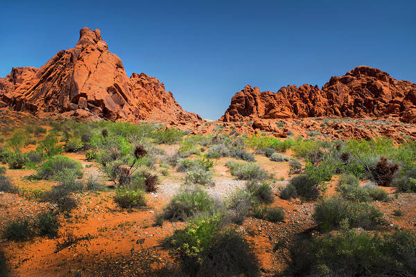 Wall Art - Photograph - Sandstone Formations Valley Of Fire by Frank Wilson