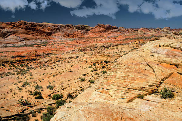 Wall Art - Photograph - Sandstone Landscape Valley Of Fire by Frank Wilson