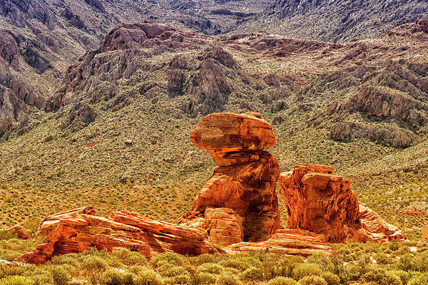 Photograph - Sandstone Outcrop Valley Of Fire by Frank Wilson