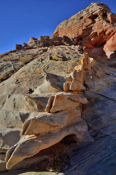 Photograph - Sandstone Spine In Valley Of Fire by Ray Mathis