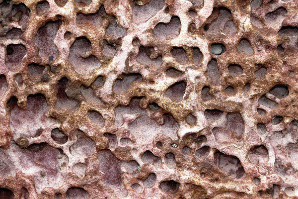 Photograph - Sandstone Textures 01 by Nicholas Blackwell