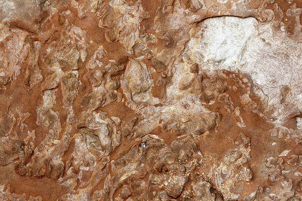 Photograph - Sandstone Textures 02 by Nicholas Blackwell