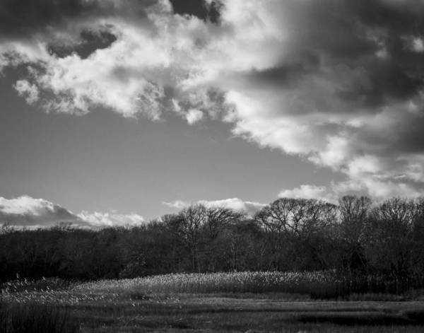 Photograph - Sandwich Marsh by Frank Winters