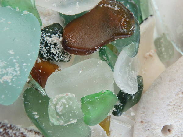 Photograph - Sandy Beach Glass 2 by Kimberly Perry