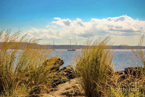 Wall Art - Photograph - Sandy Hook Bay by Colleen Kammerer