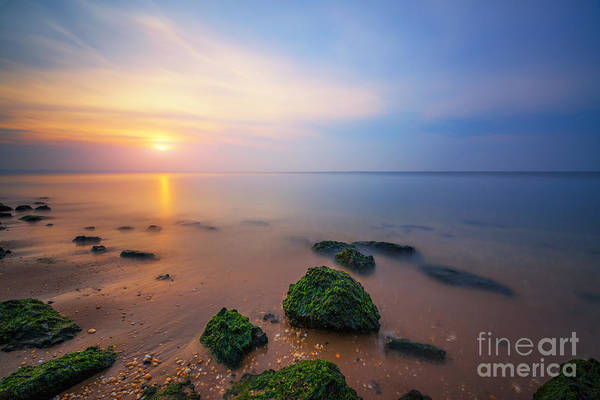 Low Tides Photograph - Sandy Hook New Jersey Sunset  by Michael Ver Sprill
