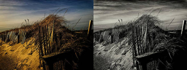 Photograph - Sandy Neck Dunes Winter Light 2x by Frank Winters