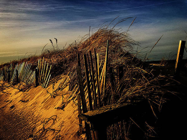 Photograph - Sandy Neck Winter Light by Frank Winters