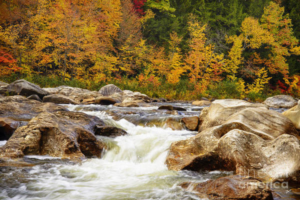 Photograph - Sandy River In Autumn by Alana Ranney