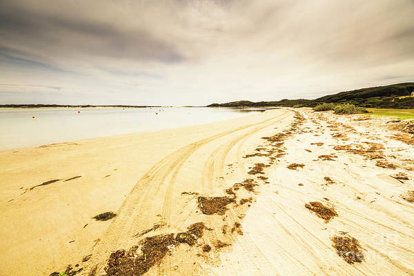 Pristine Wall Art - Photograph - Sandy Tasmanian Shores by Jorgo Photography - Wall Art Gallery