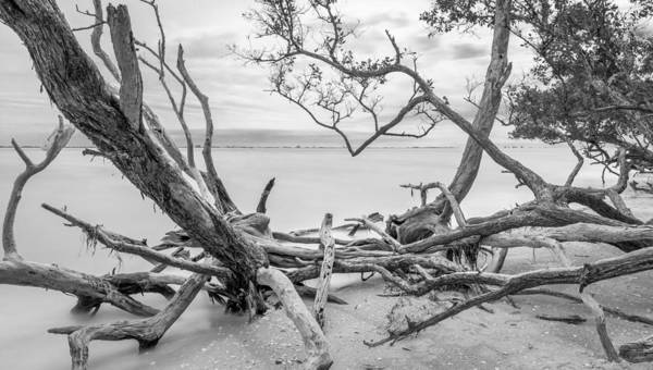 Photograph - Sanibel Island by Alexander Mayr