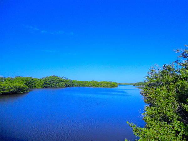 Photograph - Sanibel Island, Florida by Monique Wegmueller