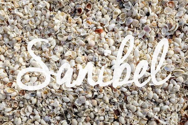 Photograph - Sanibel Island Seashells by Edward Fielding