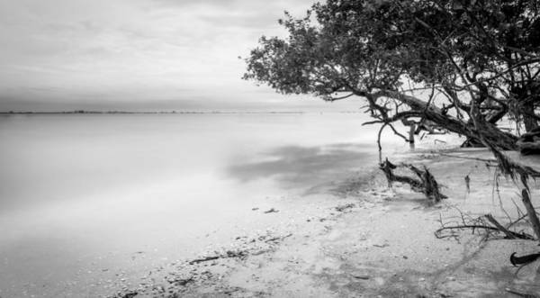Photograph - Sanibel Lighthouse Beach by Alexander Mayr