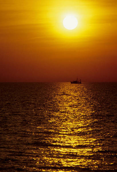 Photograph - Sanibel Shrimp Boat At Sunset by Steve Somerville