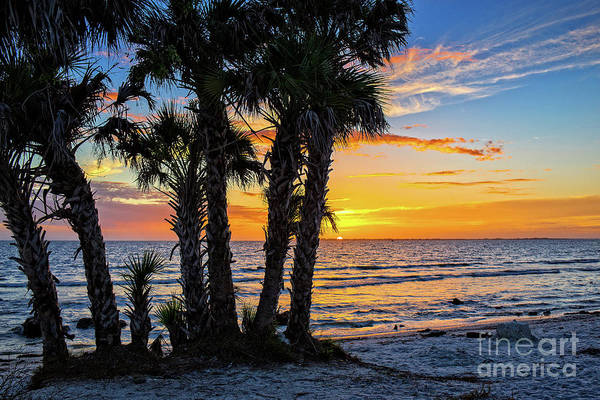 Wall Art - Photograph - Sanibel Sunset by Edward Fielding