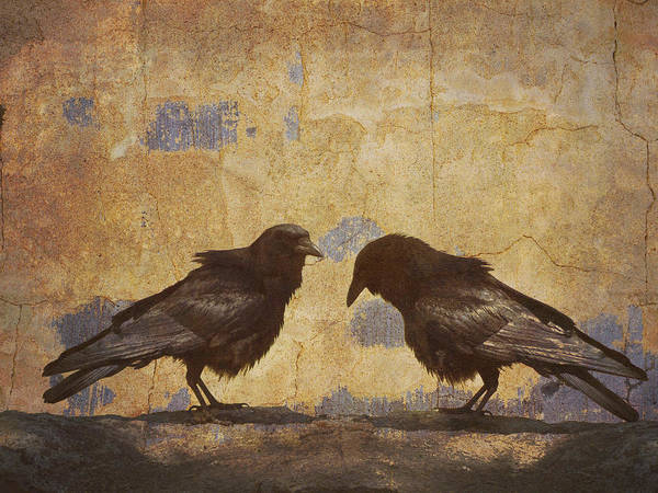 Bird Wall Art - Photograph - Santa Fe Crows by Carol Leigh