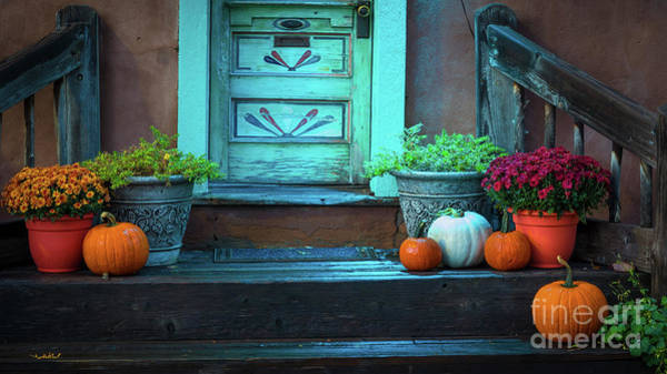 Photograph - Santa Fe Pumpkins by Inge Johnsson