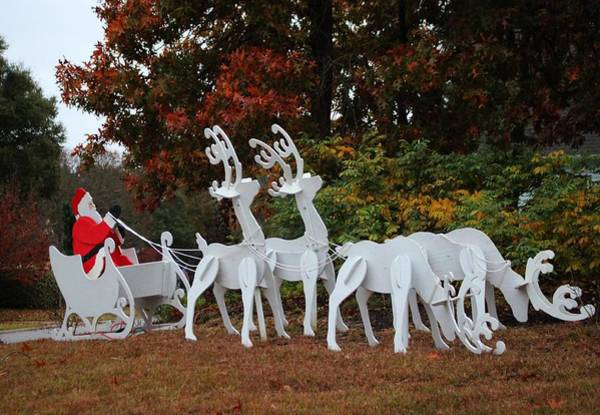 Photograph - Santa Sleigh And Reindeer by Cynthia Guinn