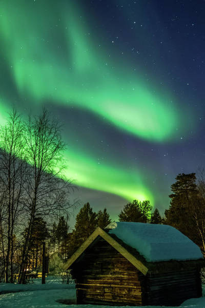 Photograph - Sapmi Hut Under The Northern Lights Karasjok Norway by Adam Rainoff