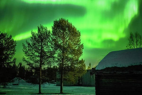 Sapmi Outdoor Museum Under The Northern Lights Karasjok Norway Art Print